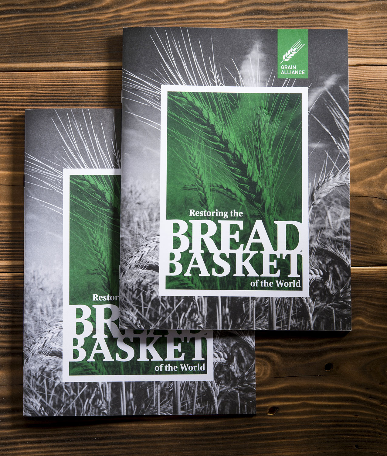Brochure of Grain Alliance, agricultural producer. Cover. Restoring the breadbasket of the world.