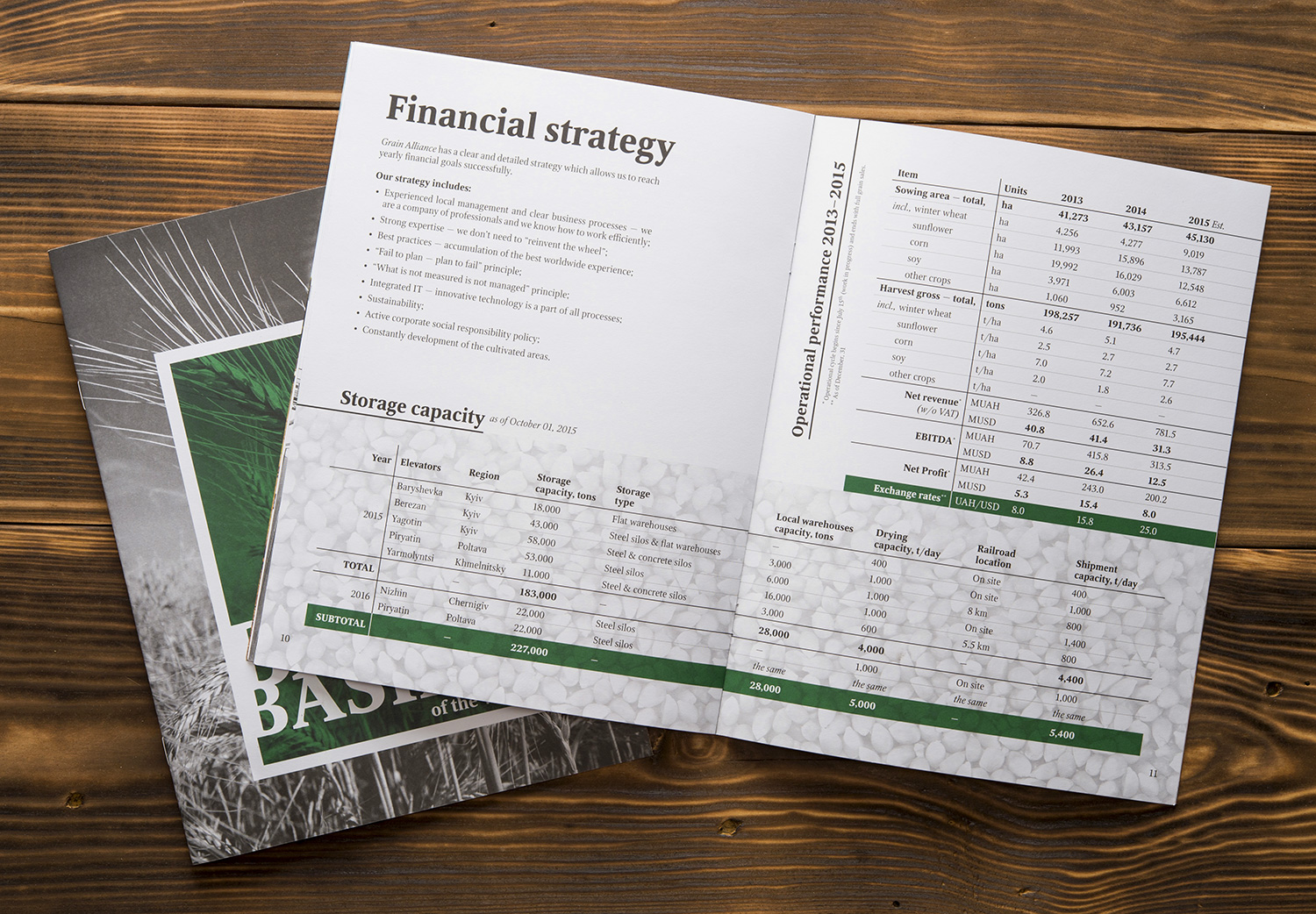Brochure of Grain Alliance, agricultural producer. Financial strategy. Storage capacity.