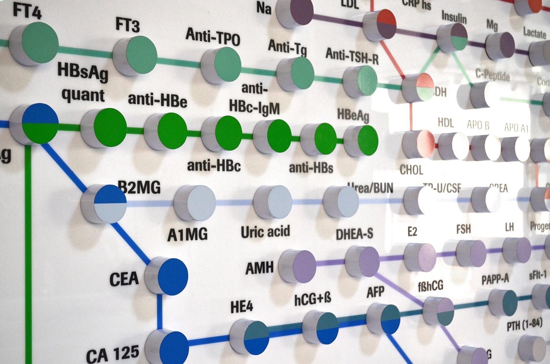 Схема с подсветкой на выставочном стенде Roche Diagnostics (Рош). Метро реагентов. Портфолио тестов.