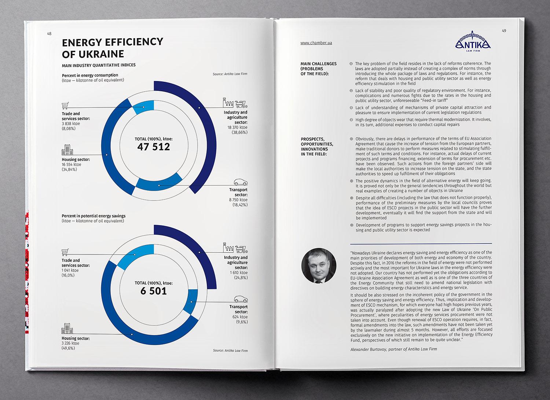 Энергоэффективность Украины. Инфографика. Обзор экономики Украины (Ukraine Country Profile), книга 2017 года.