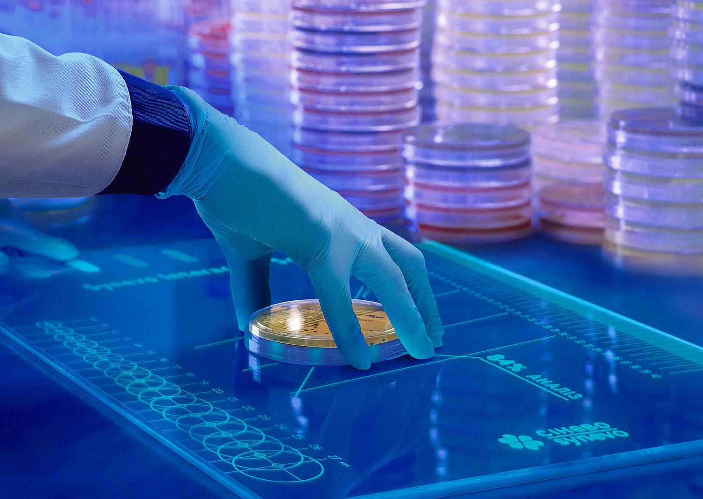 Лаборатория будущего «Синэво». Отдел микробиологии, чашка Петри на лазерном анализаторе.