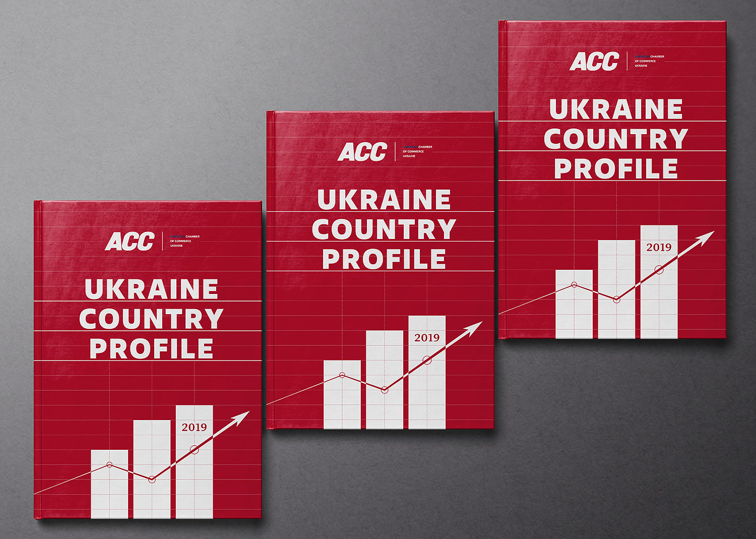 Business design of the financial publication cover. Ukraine Country Profile 2019 book