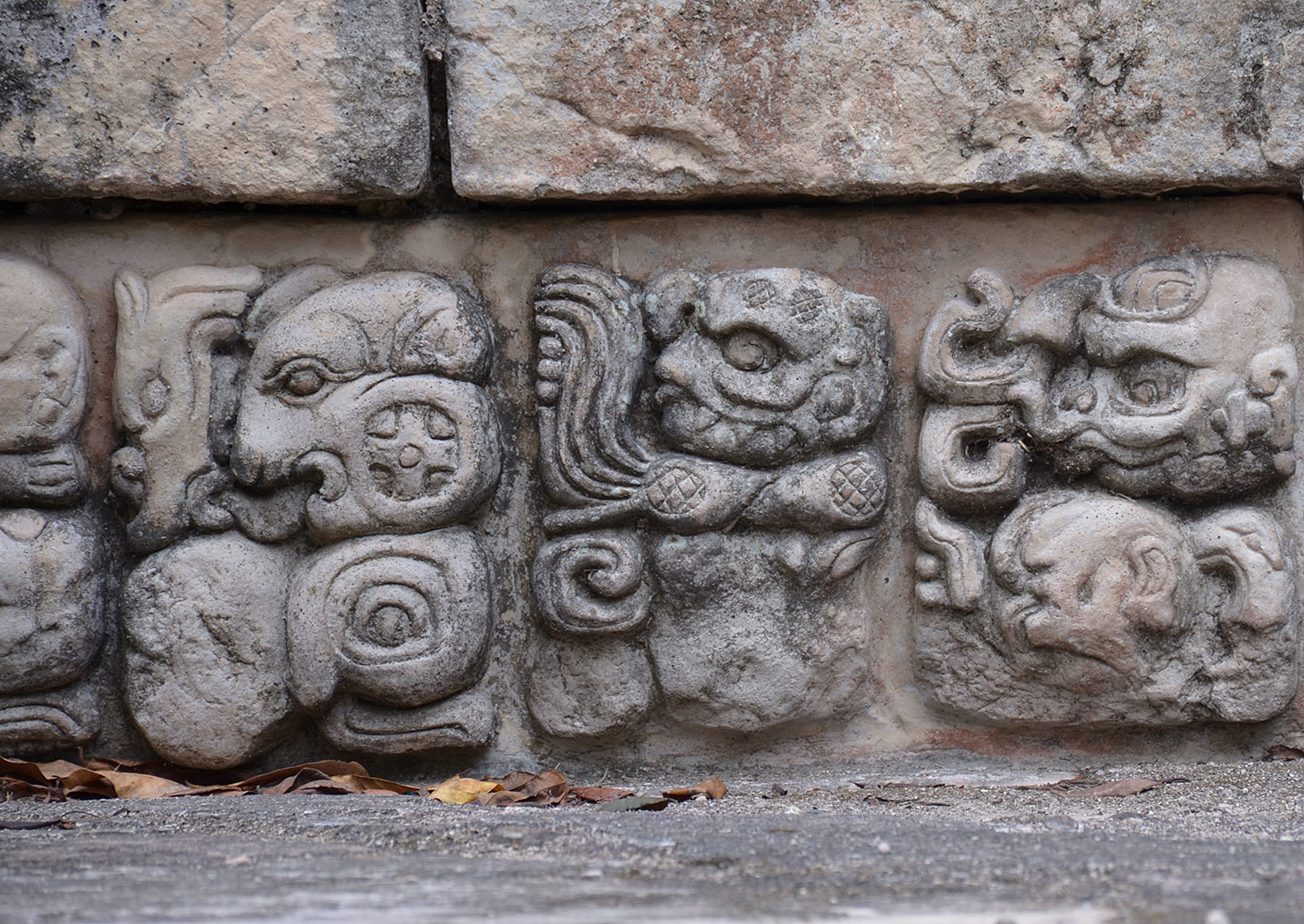 Mayan hieroglyphs on stone. The archaeological site of Copan, Honduras.