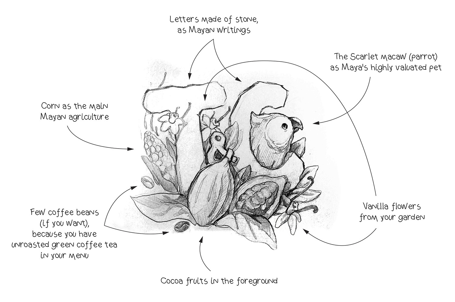 The T&C logo idea. Cocoa pods and vanilla flowers, a parrot drawing.
