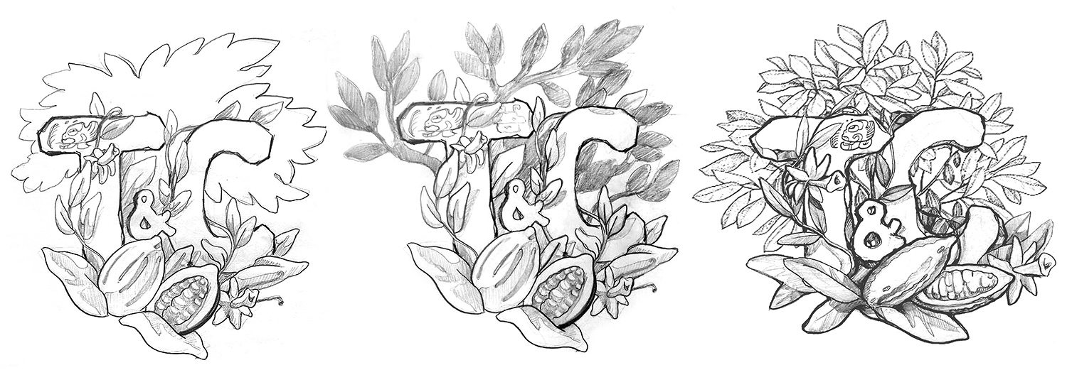 The T&C logo sketch. A pencil drawing of a cocoa tree and vanilla flowers.